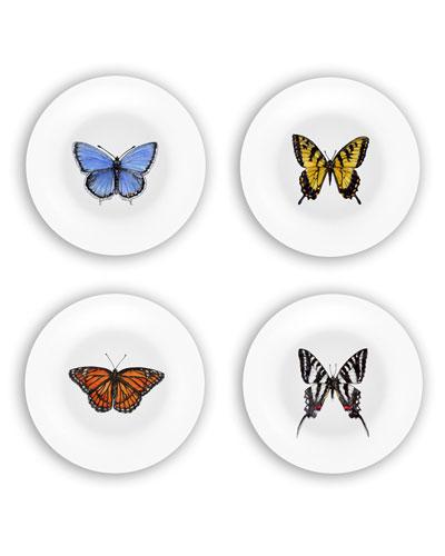 Butterflies Plates Gift Set