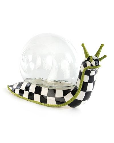 Snail Terrarium