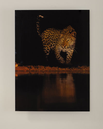 Lakeside Leopard Giclee Photography