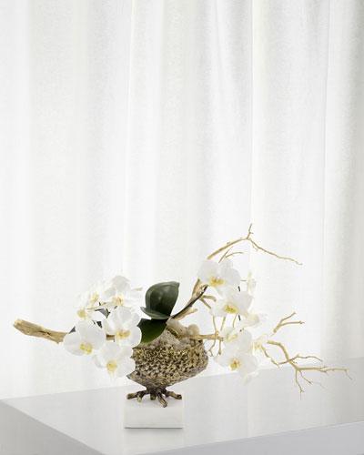 Antique Phalaenopsis Arrangement