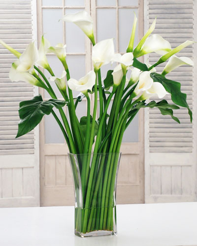 Calla Lily in Square Vase