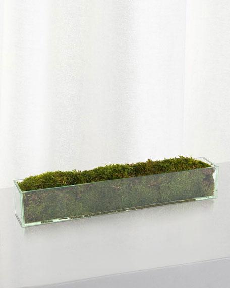 """24"""" Moss Mound Arrangement"""