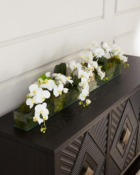 Wild Orchids Arrangement