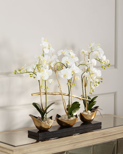 Silhouette Orchids II