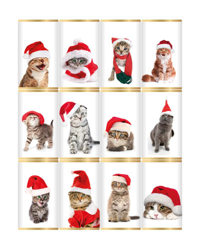 Cats in Christmas Hats Mini Chocolate Bars