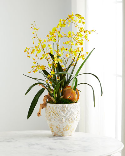 Yellow Dancing Orchids Arrangement