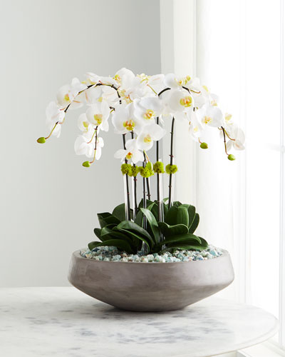Concrete Bowl Filled with Flourite & White Orchids