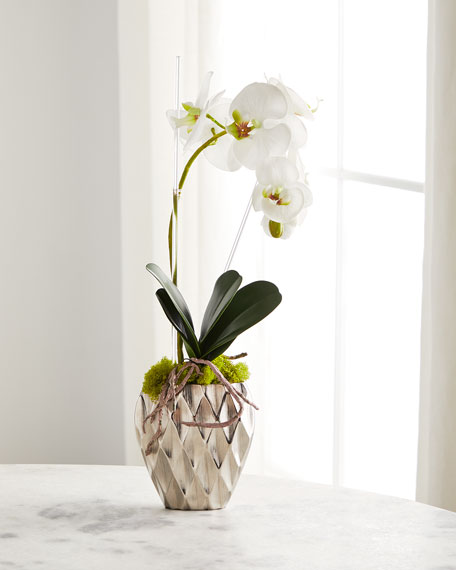 John-Richard Collection Diamond Orchid