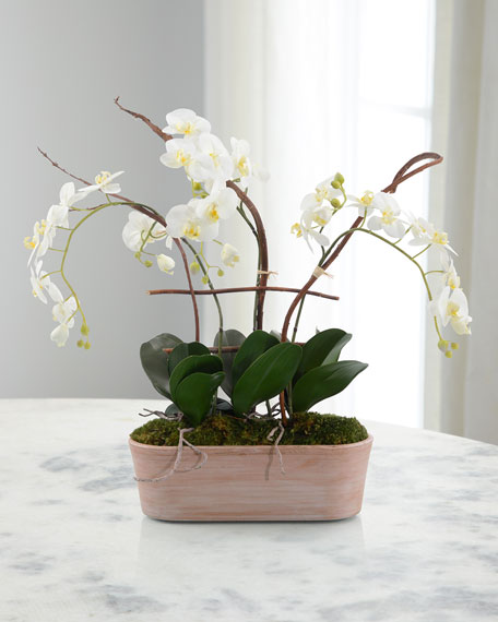 John-Richard Collection Cottage Orchids