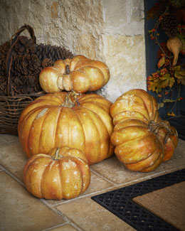 Park Hill Collections Decorative Autumn Pumpkins