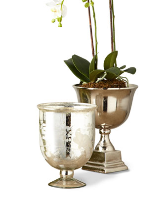 Orchid & Vessel Collection