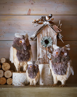 Rustic Owls & Birdhouse