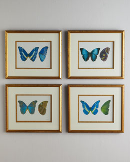 "John-Richard Collection ""Butterfly Study"" Prints"
