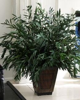 Forever Green Art/Everlast Plant Preserved Eucalyptus