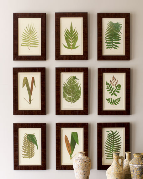 Nine Botanical Prints
