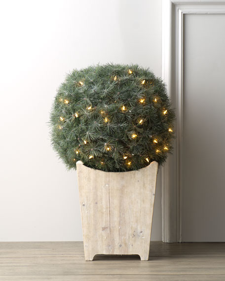 Round Topiary with Lights