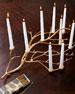 Gilded Branch Centerpiece