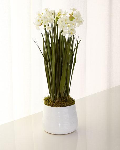 John Richard Collection Paperwhites In Bloom Faux Floral Arrangement