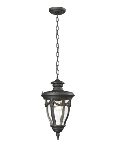 Anise 1-Light Outdoor Pendent