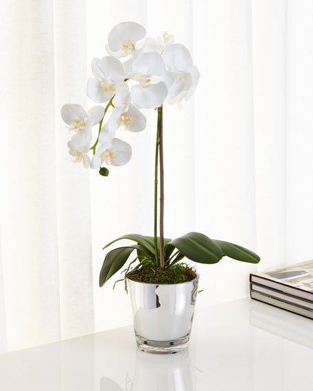 Ndi orchids in mirrored glass faux floral arrangement mightylinksfo
