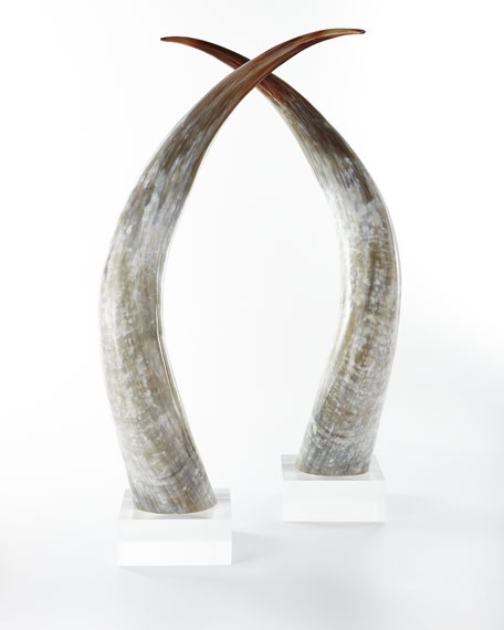 Large Horns, Set of 2