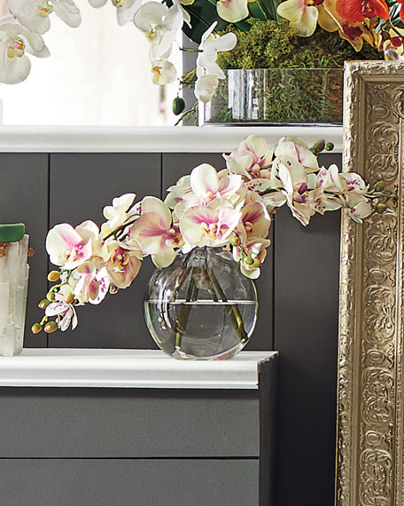 Orchid Phalaenopsis Glass Bubble