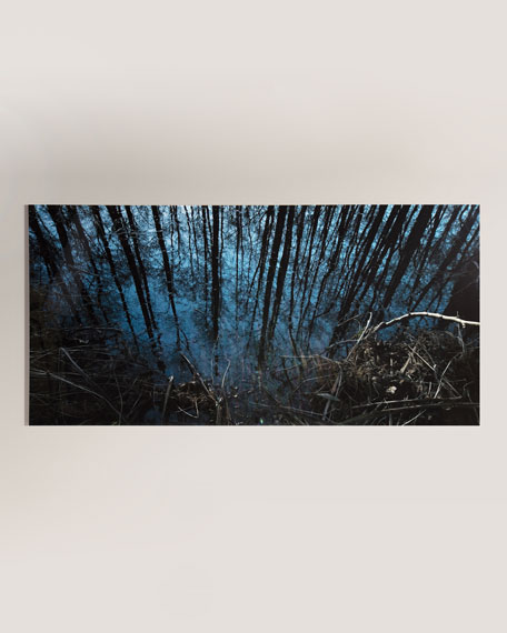 """Into the Woods"" Photography Handmade HD Metal & Acrylic Print Art"