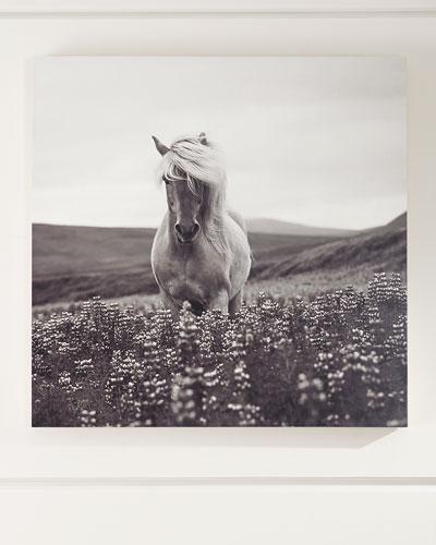 Intensity Photography Art Print on Maple Box