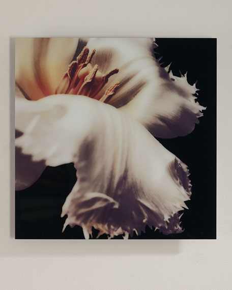 """Silk"" Soft Focus Digital Photography Art Print"