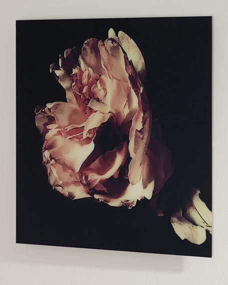 """Nonie"" Soft Focus Digital Photography Art Print"