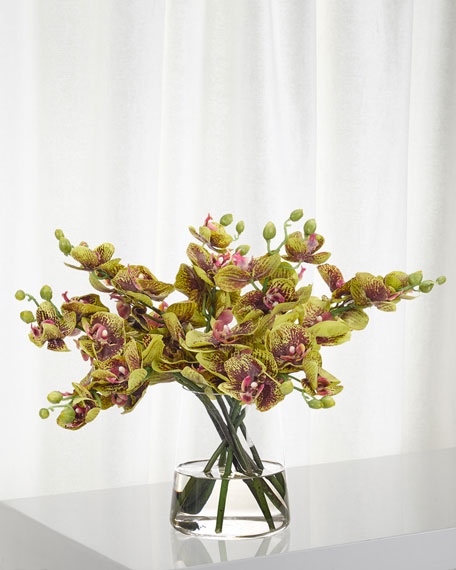 Orchid Phalaenopsis Faux Florals in Glass Vase