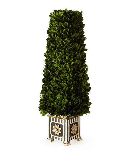Preserved Boxwood Obelisk Topiary - Small