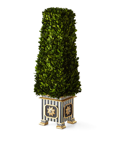 Preserved Boxwood Obelisk Topiary - Medium