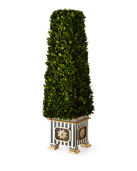 Preserved Boxwood Obelisk Topiary - Large