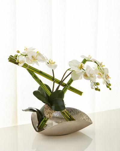 Architectural Phalaenopsis Arrangement