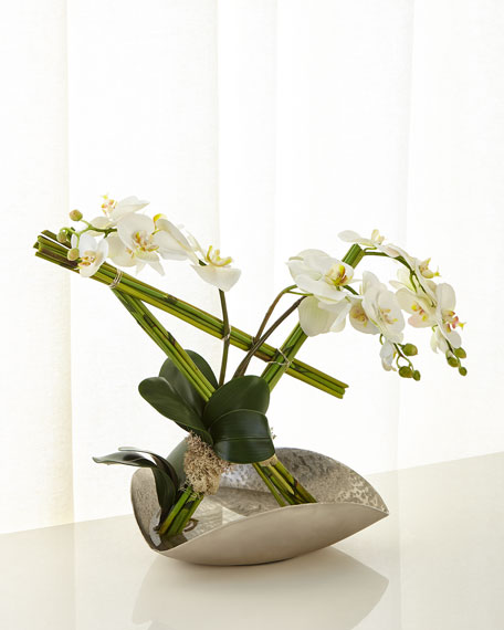 John-Richard Collection Architectural Phalaenopsis Arrangement