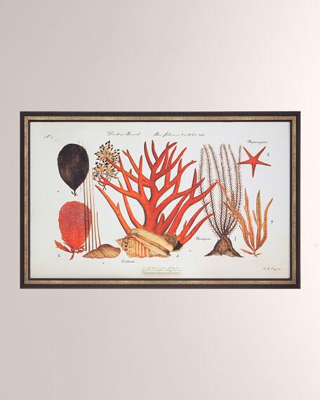 """Coral Reef II"" Giclee Wall Art"