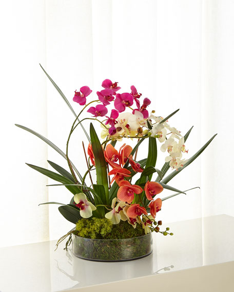 John-Richard Collection Atrium Orchids Arrangement