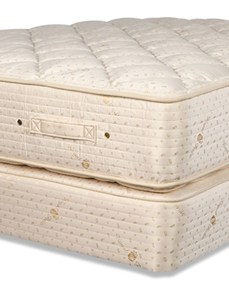 Dream Spring Classic Plush Twin XL Mattress Set