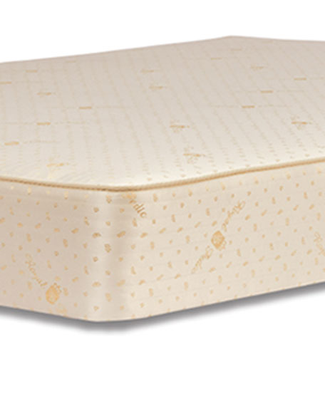 Dream Spring Classic Firm Twin Mattress Set