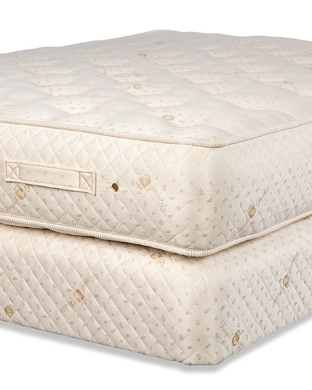 Dream Spring Ultimate Firm Twin Mattress Set