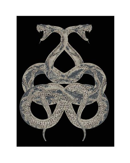 Snake Rug, 16.4' x 13.1'