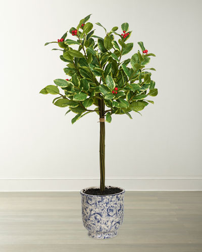 28 Rounded Holly Tree in Ceramic Pot