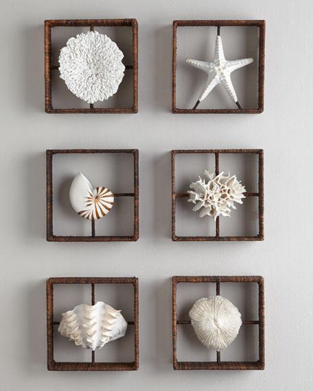 Mushroom Coral Shadowbox