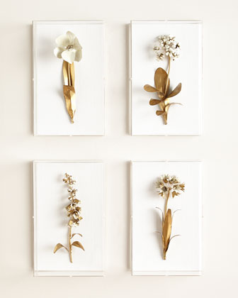Original Gilded Flower Studies