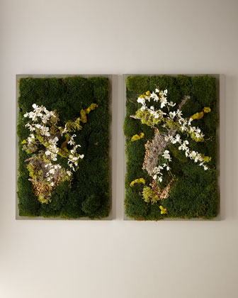 Forrest Escape  Wall Art and Matching Items