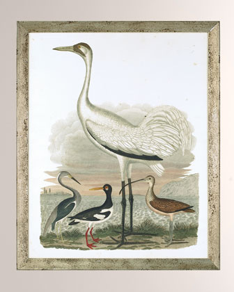 Large Heron Family II Art Print  and Matching Items