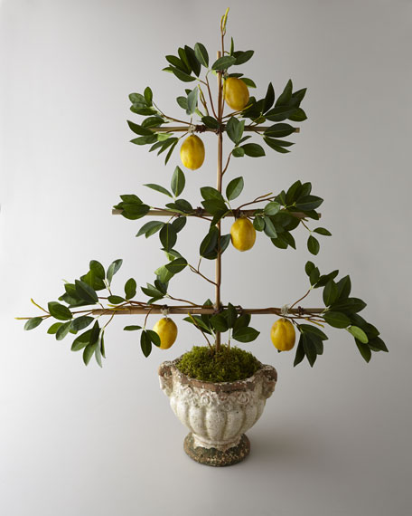 """Lemon Espalier"" Faux Arrangement"