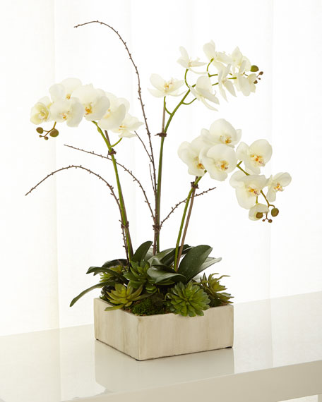NDI Faux Phalaenopsis Orchid in Square Slate