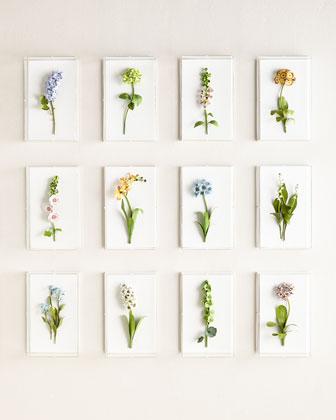 Original Painted Flower Studies